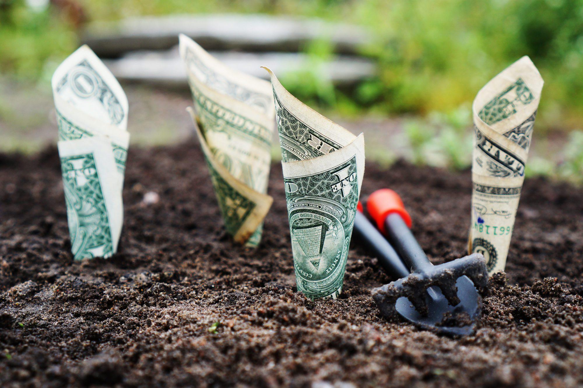 Acheter en Viager pour Se Créer sa Retraite par Capitalisation